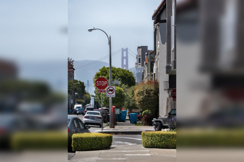 """#7 So, the Marina may not be my favorite neighborhood in the world—it is often more akin to a reserved garden suburb than an urban neighborhood. That said, as gardens go, it *is* a nice one. And so even though it's a bit stereotypical, how could I miss a shot like this... (<a href=""""https://thefoxandthecity.com/files/P1010797_horiz.jpg""""  target=""""_blank"""">Full size</a>)"""